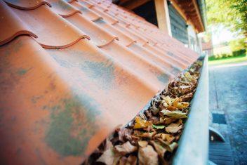 Oud-Hollandse dakpannen en zinken dakgoot
